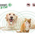 EcoPest Dog & Cat: Funziona o TRUFFA? Recensione e Opinioni