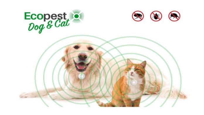 EcoPest Dog & Cat